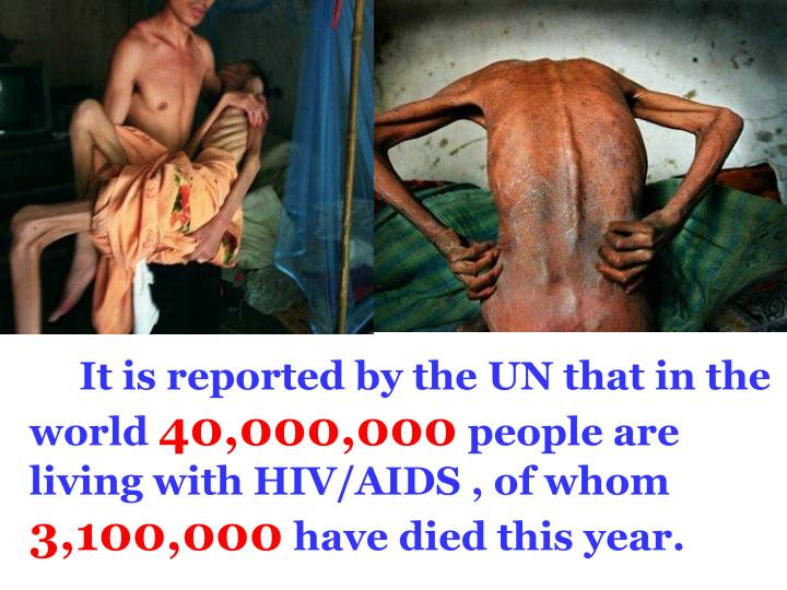 It is reported by the UN that in the