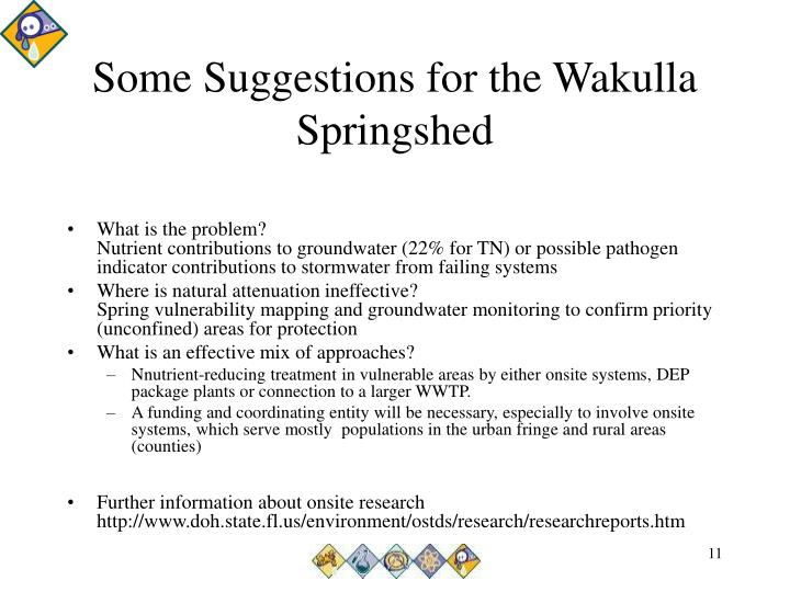 Some Suggestions for the Wakulla Springshed