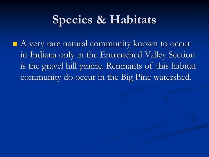 Species & Habitats