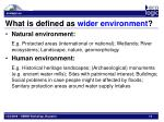 what is defined as wider environment