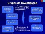 grupos de investiga o