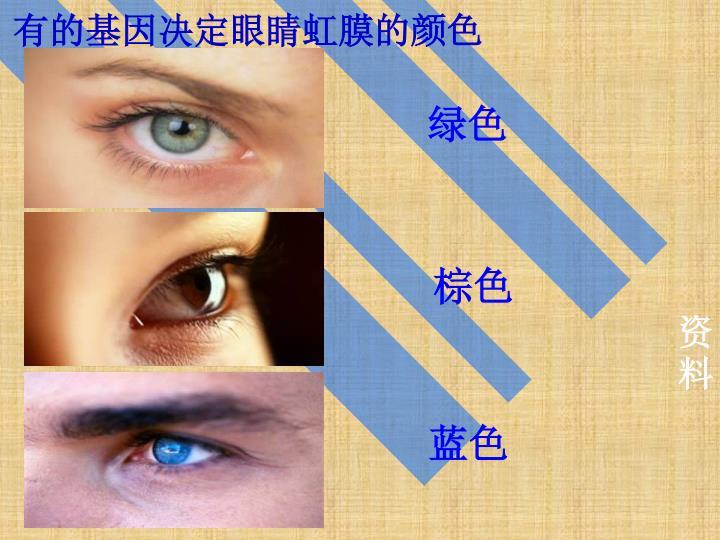 有的基因决定眼睛虹膜的颜色