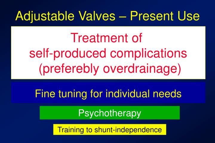 Adjustable Valves – Present Use