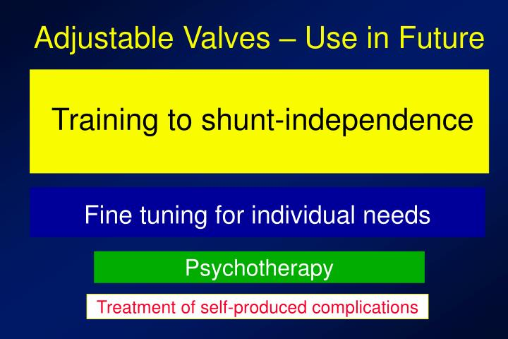 Adjustable Valves – Use in Future