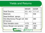 yields and returns