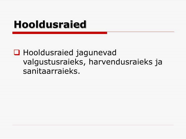 Hooldusraied