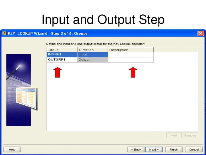 Input and Output Step