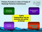 primary function roles of treaty of waitangi fisheries commission