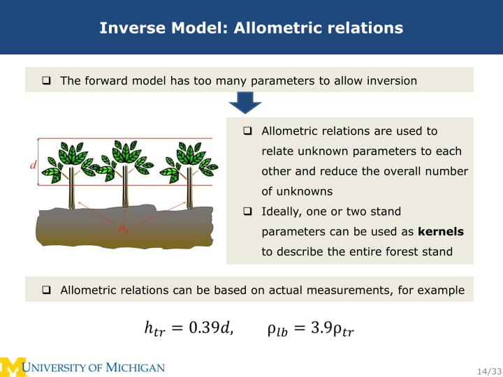 Inverse Model: Allometric relations