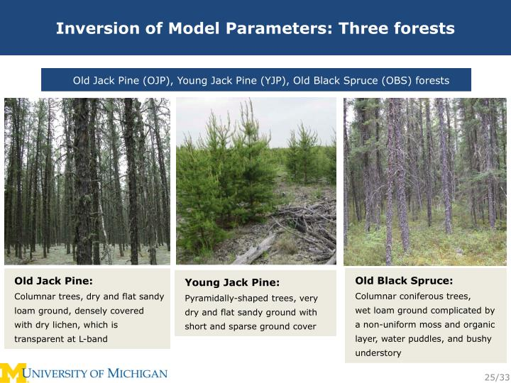 Inversion of Model Parameters: Three forests