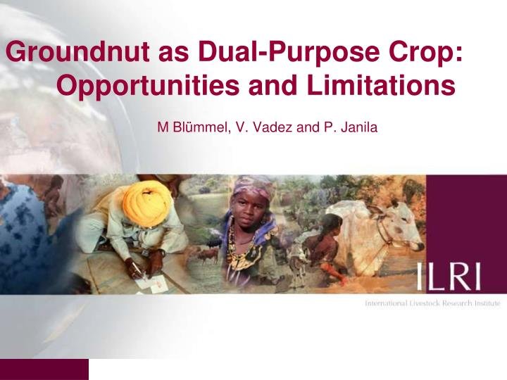 groundnut as dual purpose crop opportunities and limitations m bl mmel v vadez and p janila n.