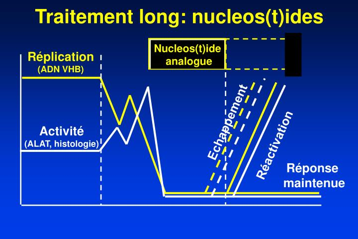 Traitement long: nucleos(t)ides