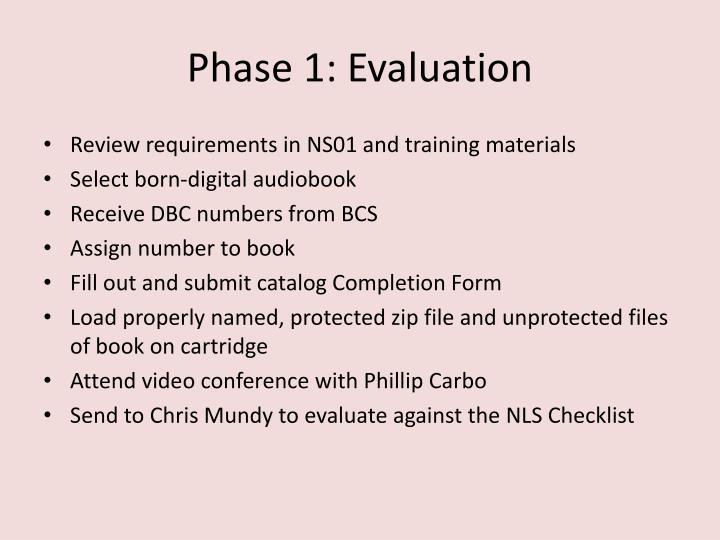 Phase 1: Evaluation