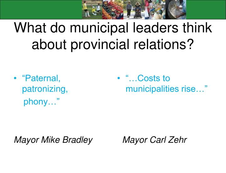 What do municipal leaders think about provincial relations?