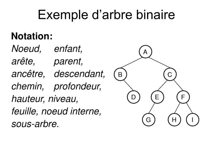 Exemple d arbre binaire