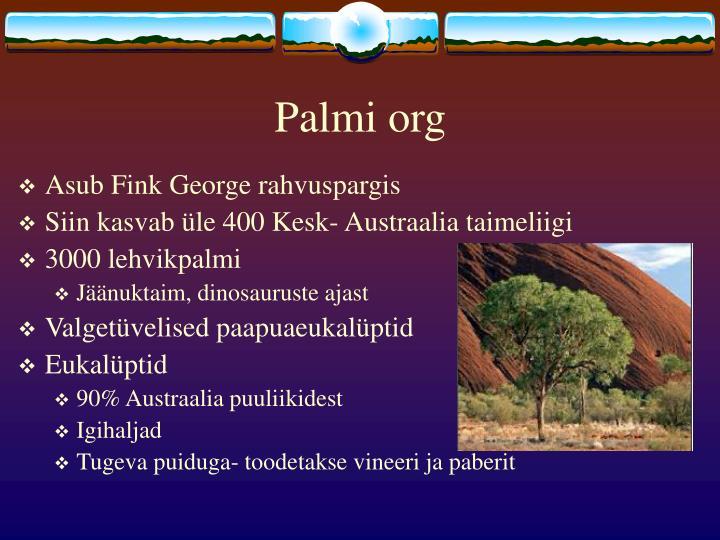 Palmi org