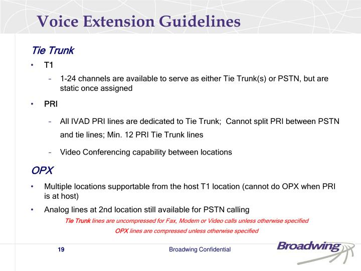 Voice Extension Guidelines