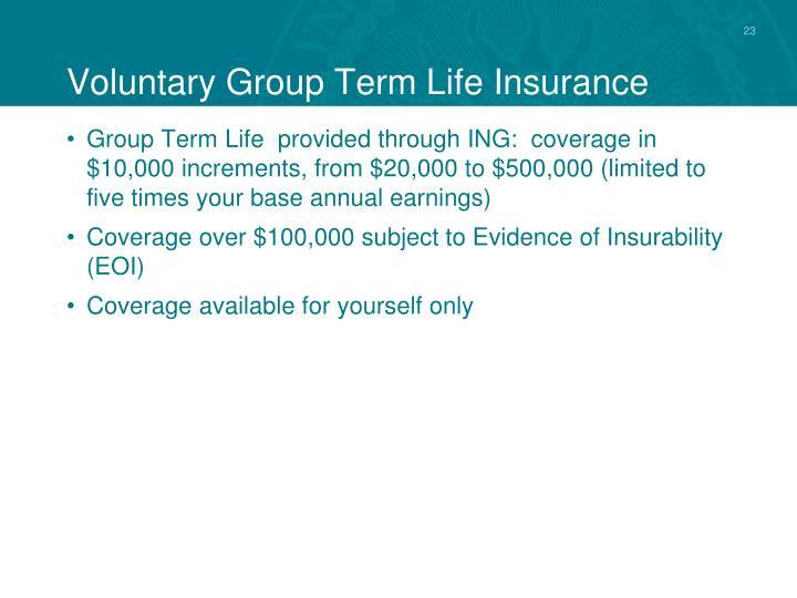 Voluntary Group Term Life Insurance