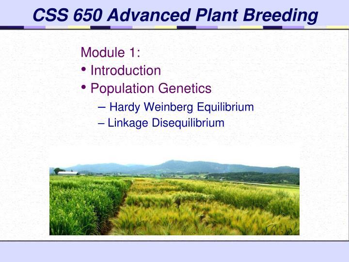Css 650 advanced plant breeding