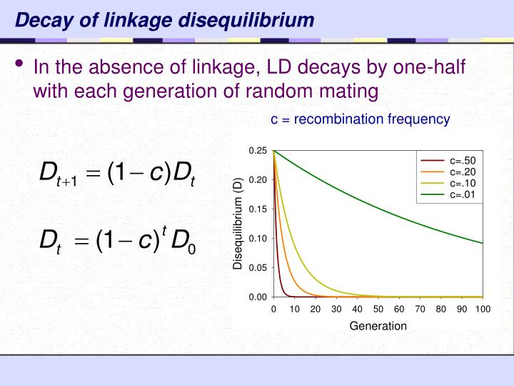 Decay of linkage disequilibrium