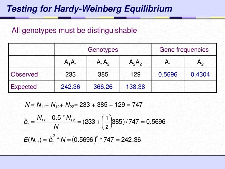 Testing for Hardy-Weinberg Equilibrium