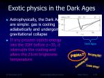 exotic physics in the dark ages2