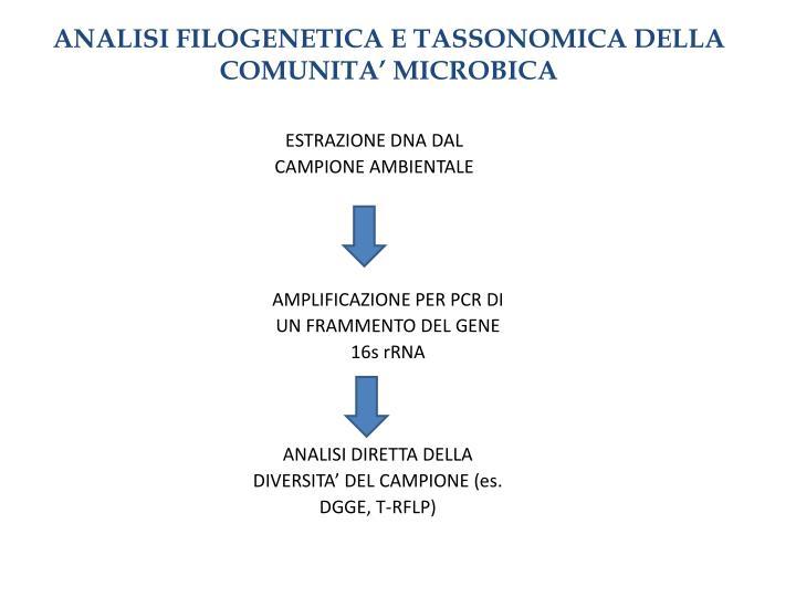 ANALISI FILOGENETICA E TASSONOMICA DELLA COMUNITA' MICROBICA
