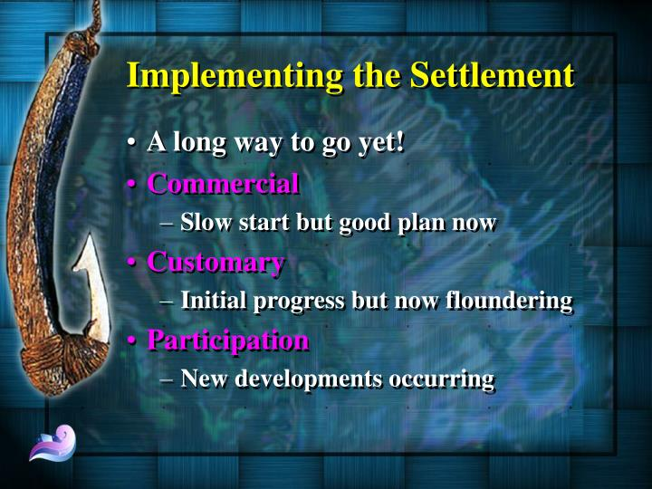 Implementing the Settlement
