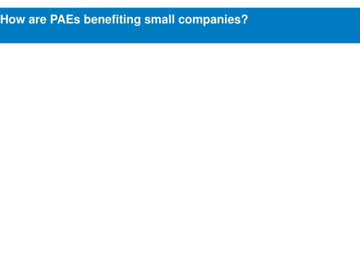 How are PAEs benefiting small companies?