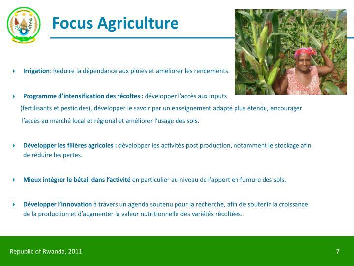 Focus Agriculture