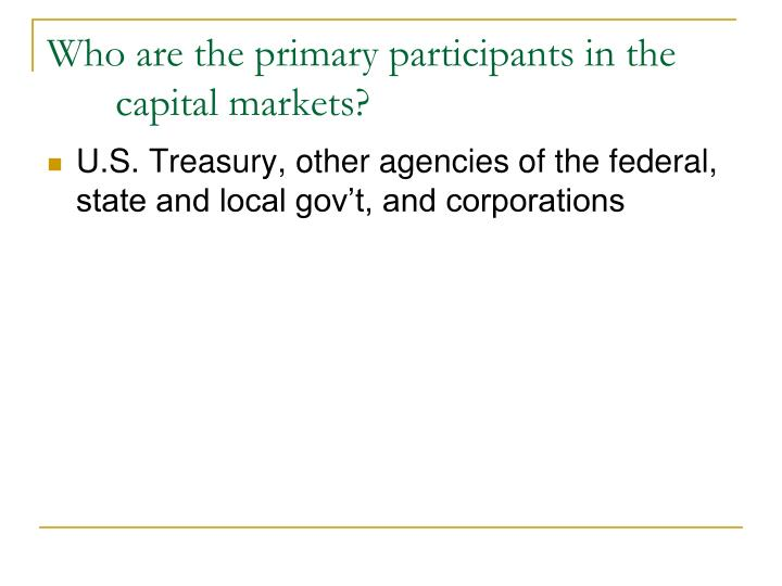 Who are the primary participants in the capital markets?