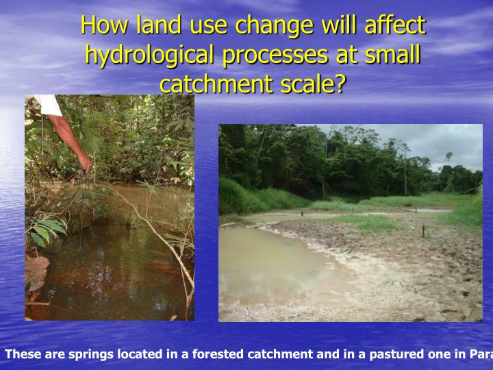 How land use change will affect hydrological processes at small catchment scale