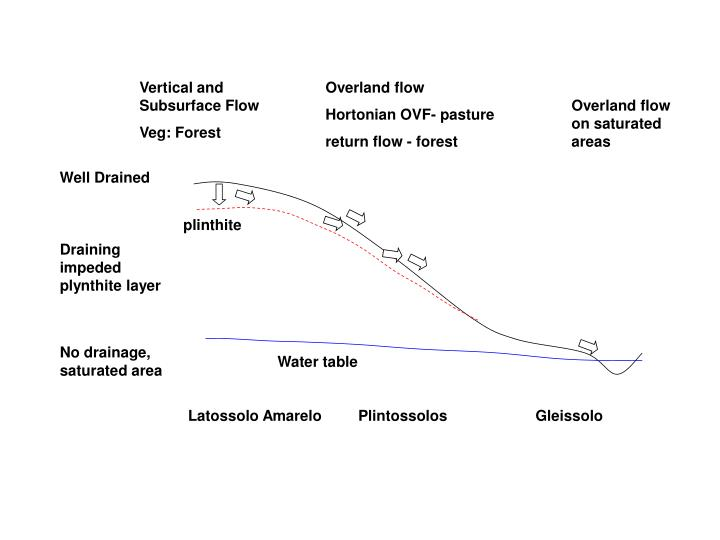 Vertical and Subsurface Flow