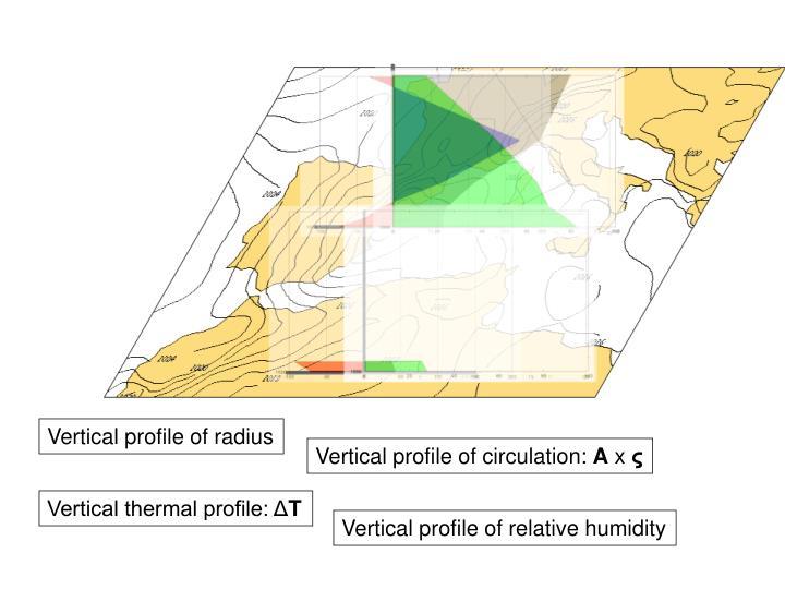 Vertical profile of radius