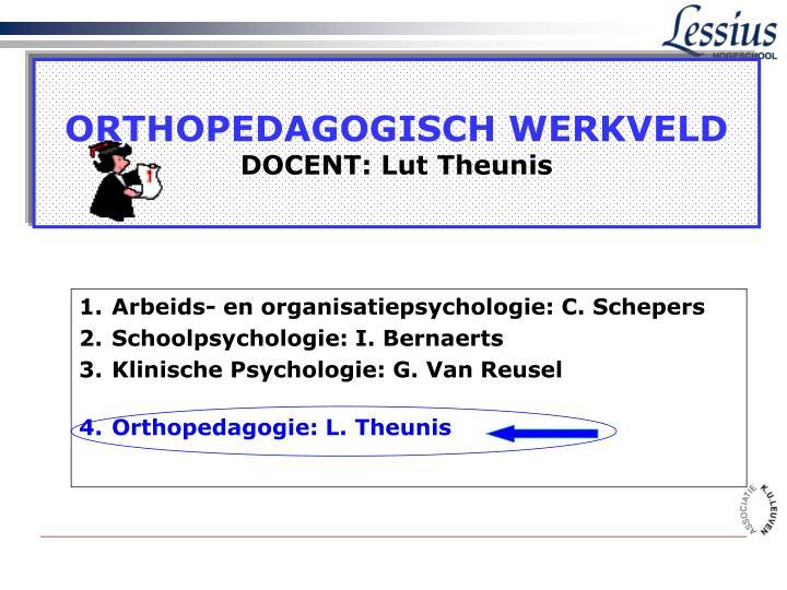 orthopedagogisch werkveld docent lut theunis n.