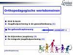 orthopedagogische werkdomeinen