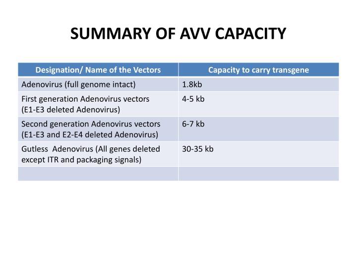 SUMMARY OF AVV CAPACITY