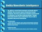 bodily kinesthetic intelligence