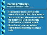 learning pathways storage of the information can vary fishback 1998