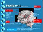 reptilian 1 sylwester 1995 pp 39 44