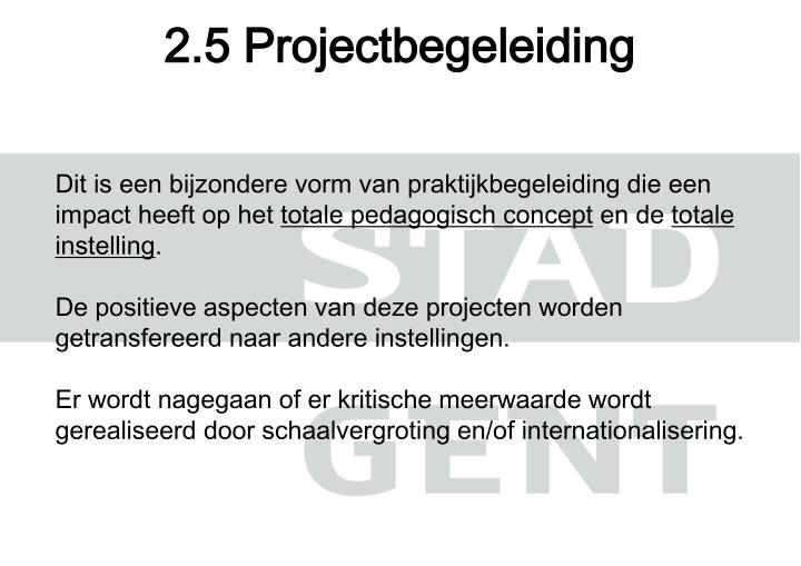 2.5 Projectbegeleiding