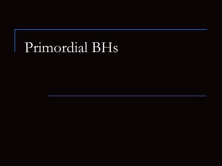 Primordial bhs