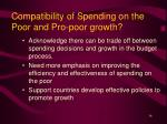compatibility of spending on the poor and pro poor growth