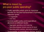 what is meant by pro poor public spending