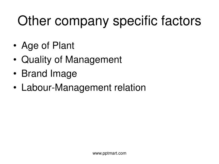 Other company specific factors