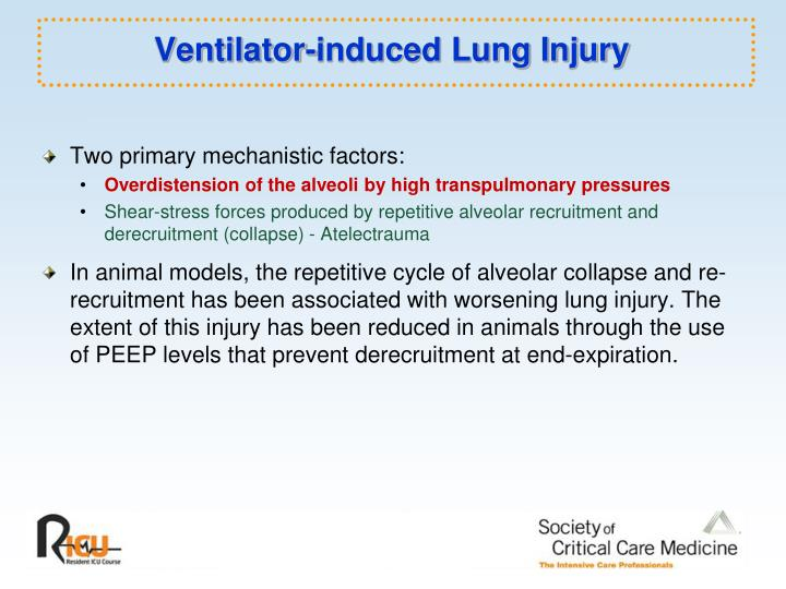 Ventilator-induced Lung Injury