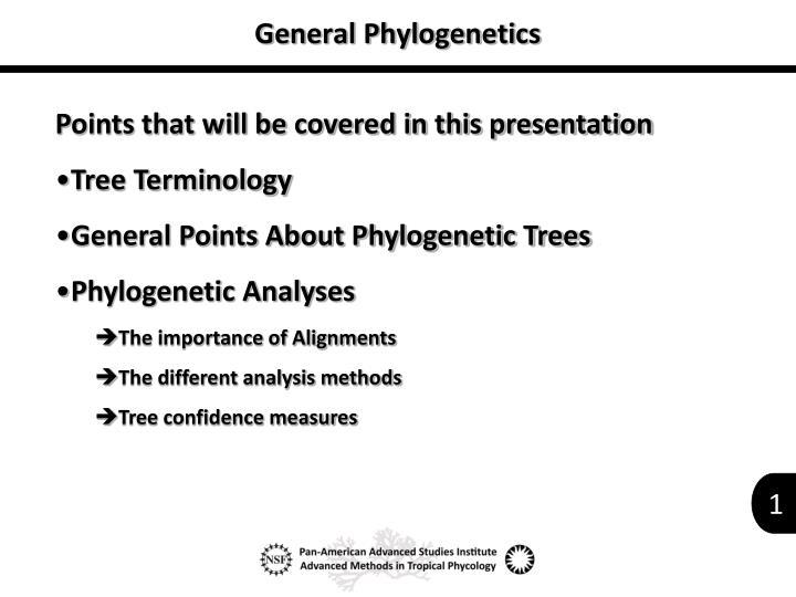 general phylogenetics n.