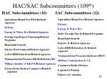 hac sac subcommittees 109 th