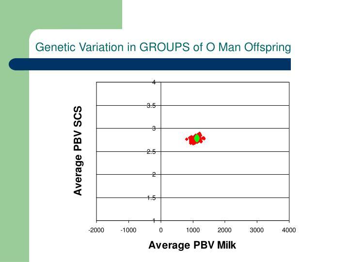 Genetic Variation in GROUPS of O Man Offspring