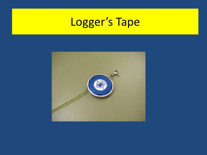 Logger's Tape